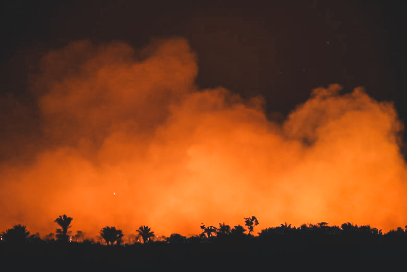 Amazonas, Regenwald, Amazonas brennt, Brände im Amazonas, Regenwald Brand, Brasilien Regenwald brennt, Feuer im Amazonas