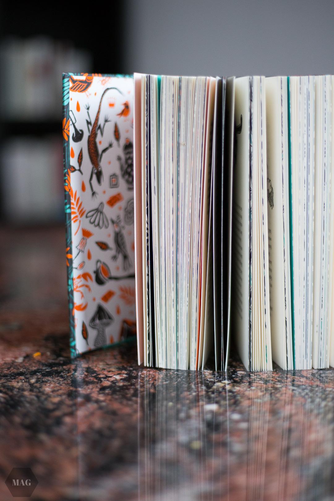Bücher ausmisten, Ausmisten, Bücher weggeben, Bücher verschenken, Bücher reduzieren, Bücher, Bücher minimalisieren
