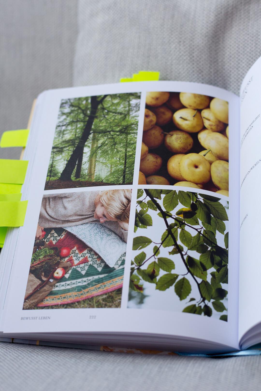 La Naturalista, La Naturalista Rezension, einfach leben Buch, Minimalismus Buch, La Naturalista, Xochi Balfour Buch, Xochi Balfour, natürlich leben Buch, Die Natürliche Rezension, natürlich leben