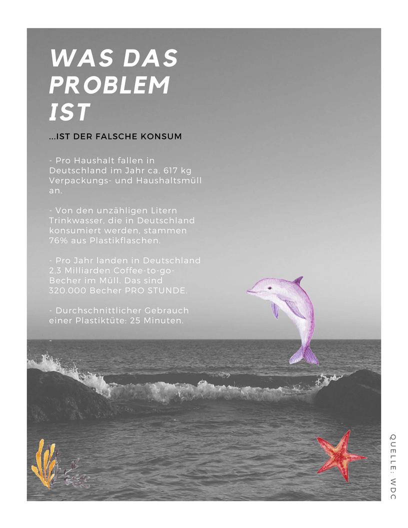 Plastik im Meer, Weniger Plastik ist Meer, WDC Plastik im Meer, Whale and Dolphin Conversation, Plastikproblem Meer, Plastik in den Ozeanen, Plastik im Meer Folgen, Plastik im Meer Fakten, Plastik im Meer Auswirkungen