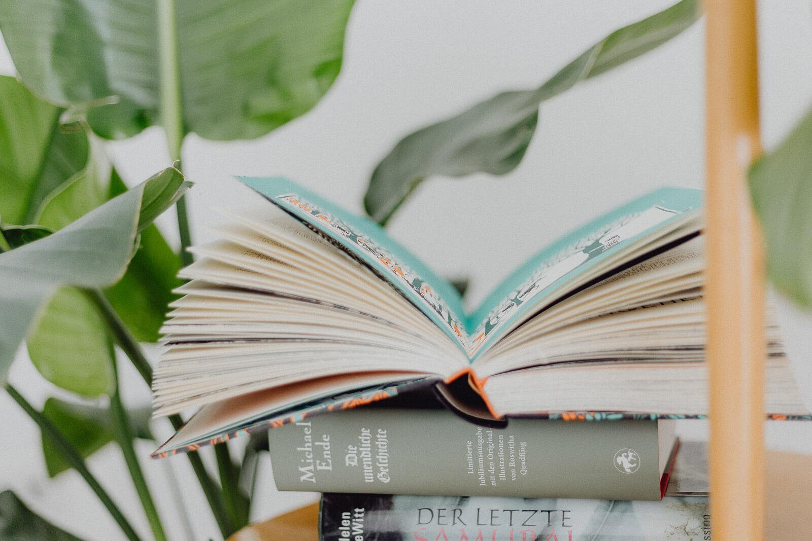 Bücherliste, Leseliste, Buchempfehlung, Lesen, Lese-Empfehlungen, Leseninspiration, Buchblogger, Bücher für den Sommer, Sommerlektüre, Sommerbücher, Sommerleseliste, Sommer Lesen Bücher, Bücher vegan, Bücher Klima, Bücher Nachhaltigkeit, Bücher Gesellschaft, Bücherliste