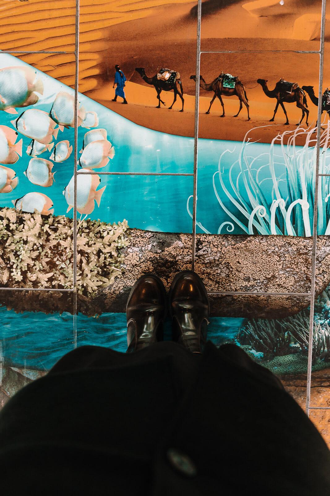 Bremerhaven, Bremerhaven Klimahaus, Klimahaus Bremerhaven, Restessen, Zero Waste Kochen, Zero Waste Kitchen, Zero Waste Essen, Lebensmittelverschwendung, Lebensmittel, Atlantic Hotel Sail City Bremerhaven, Atlantic Hotel, Atlantic Hotel Sail City, Bremerhaven Blog, Bremerhaven Reisen, Resteessen